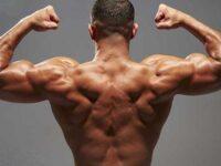توقف رشد عضلات